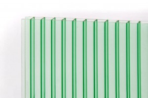 PetAlex Pronto 6мм зелёный