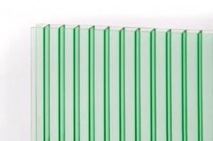 PetAlex Platino 16мм зелёный