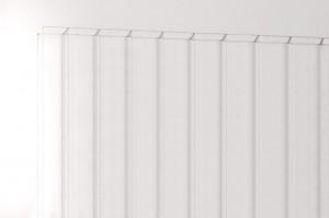 PetAlex Platino 16мм прозрачный